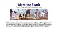 Montrose Beach Chicago, David Avison